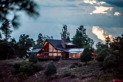 Pagosa Springs Single Family Home For Sale: 311 Crockett