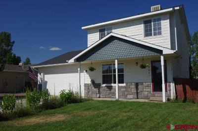 Montrose Single Family Home For Sale: 1980 Stan Drive