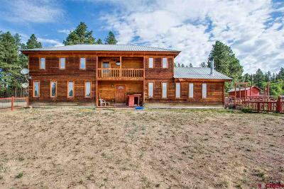 Bayfield Single Family Home For Sale: 47807 Us Hwy 160