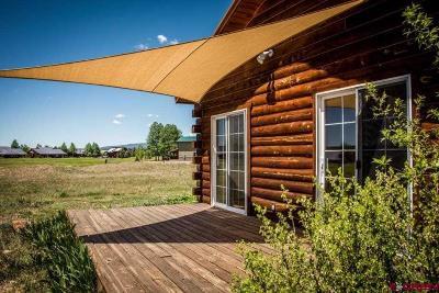 Pagosa Springs Single Family Home For Sale: 387 Midiron Avenue