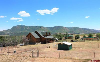 Mancos Single Family Home For Sale: 11062 Road 42
