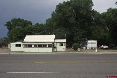 Commercial For Sale: 691 N Highway 50