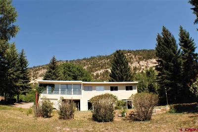 Durango Single Family Home For Sale: 760 Animas View Dr.