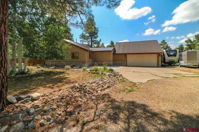 Pagosa Springs Single Family Home For Sale: 22 Brassie Court