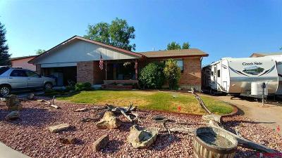 Montrose Single Family Home For Sale: 2270 Jason Way