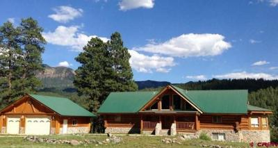 Pagosa Springs Single Family Home For Sale: 57 Sunflower Court