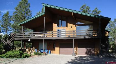 Pagosa Springs Single Family Home UC/Contingent/Call LB: 139 S Squaw Canyon Place