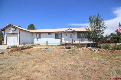 Pagosa Springs Single Family Home For Sale: 175 Lassen