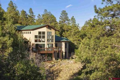 Durango Single Family Home For Sale: 174 King Mountain Road