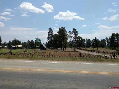 Pagosa Springs Single Family Home For Sale: 4500 W Hwy160 Highway