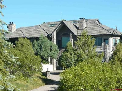 Ouray County Single Family Home For Sale: 6995 County Road 5