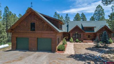 Pagosa Springs Single Family Home For Sale: 113 Black Bear Place