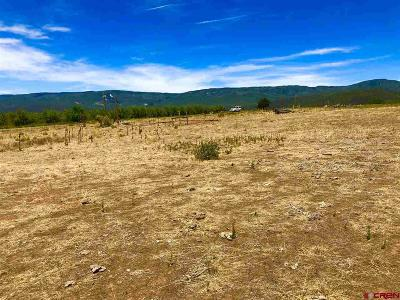 Cedaredge Residential Lots & Land For Sale: 2375 Road
