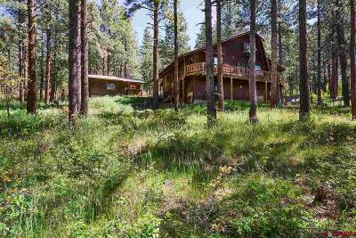 La Plata County Single Family Home For Sale: 685 Rosalie Drive