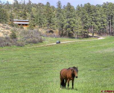 La Plata County Farm For Sale: 46778 Us Highway 160