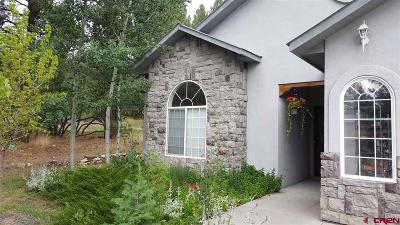 Pagosa Springs Single Family Home NEW: 221 Aspenglow Boulevard #A