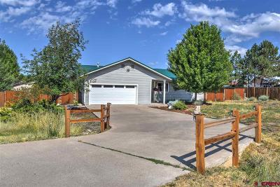 La Plata County Single Family Home UC/Contingent/Call LB: 671 Cedar Drive