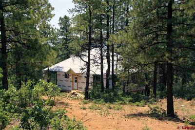 Pagosa Springs Single Family Home For Sale: 214 Justin's Road