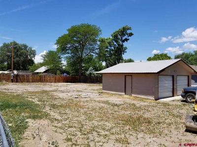 Delta Residential Lots & Land For Sale: 253 King Street