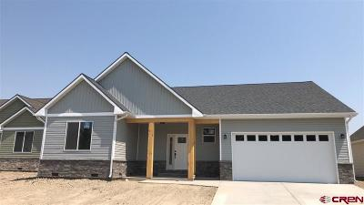 Montrose Single Family Home NEW: 1312 Fivemile Creek Avenue