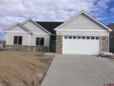 Montrose Single Family Home NEW: 1328 Fivemile Creek Avenue