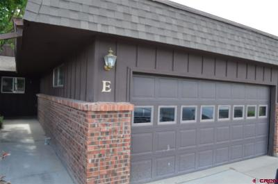Montrose Condo/Townhouse NEW: 1120 Phillips Court #E
