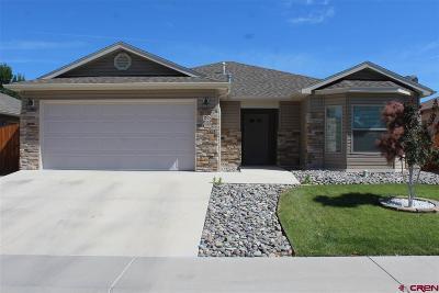 Montrose Single Family Home For Sale: 1515 Animas Street