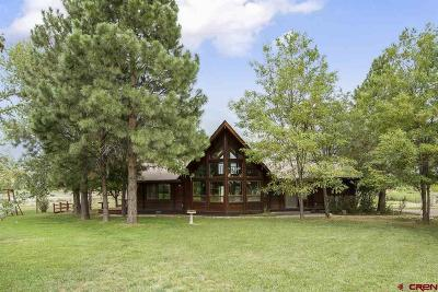 La Plata County Single Family Home UC/Contingent/Call LB: 147 High Lane