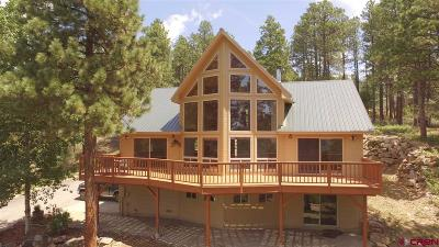 La Plata County Single Family Home UC/Contingent/Call LB: 197 Buckhorn Road