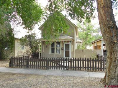 Montrose Single Family Home NEW: 630 N 1st Street