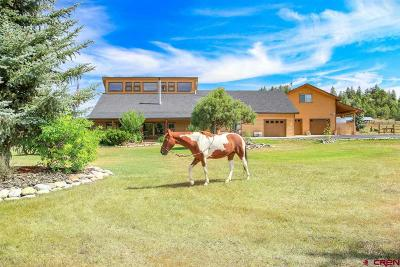 Pagosa Springs Single Family Home For Sale: 186 Spring Court