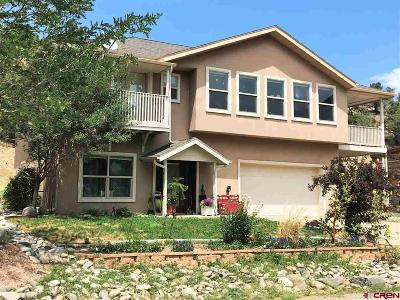 Single Family Home For Sale: 13675 Ragged Mountain Drive