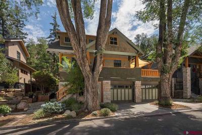 La Plata County Single Family Home For Sale: 419 E 12th Street