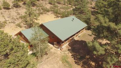 La Plata County Single Family Home UC/Contingent/Call LB: 272 Double D Road