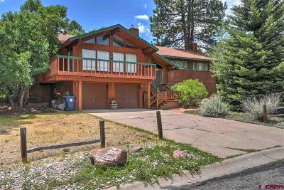 La Plata County Single Family Home For Sale: 316 Aspen Drive