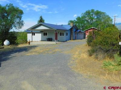 Cedaredge Single Family Home For Sale: 19487 Green Valley Road