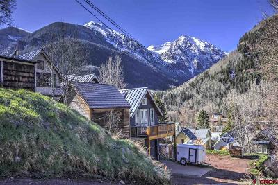 Telluride Residential Lots & Land For Sale: 207 E Gregory Avenue