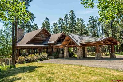 Pagosa Springs Single Family Home For Sale: 942 Hidden Valley Drive