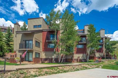 Mt. Crested Butte Condo/Townhouse For Sale: 21 Crested Mountain Lane #508