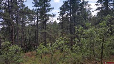 Durango Residential Lots & Land For Sale: Groves Drive