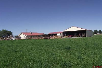 Delta CO Farm For Sale: $979,950
