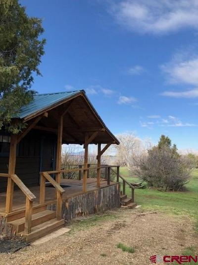 Mancos Single Family Home For Sale: 14033 Road 36.7