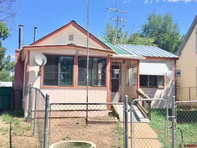 Mancos Single Family Home For Sale: 662 Riverside