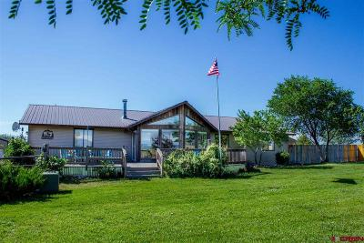 La Plata County Single Family Home For Sale: 1420 Cr 302