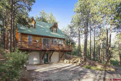 La Plata County Single Family Home For Sale: 75 Antelope Drive