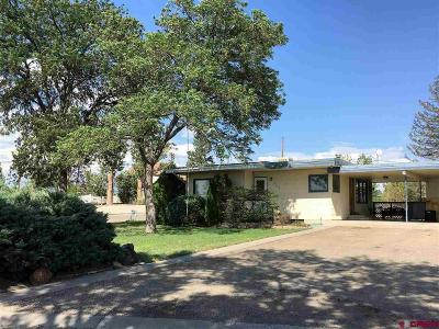 Delta Single Family Home For Sale: 200 Grand Boulevard