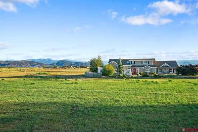 Durango Single Family Home For Sale: 331 Cr 302