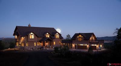 La Plata County Single Family Home For Sale: 1540 Sheep Springs Road