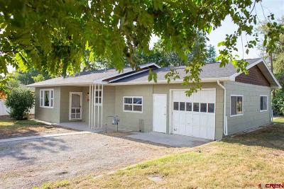 Montrose Single Family Home UC/Contingent/Call LB: 517 Willow Road