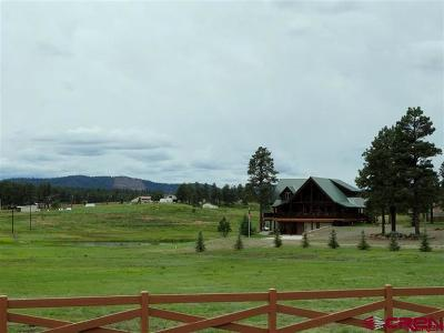 Pagosa Springs Single Family Home For Sale: 112 Holiday Drive